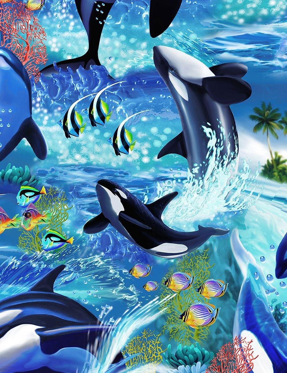 Killerwhales 4-Sided Hugger Comforter by California Kids