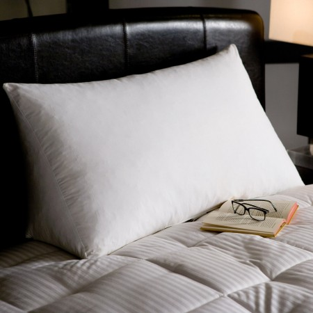 Reading Wedge Pillow