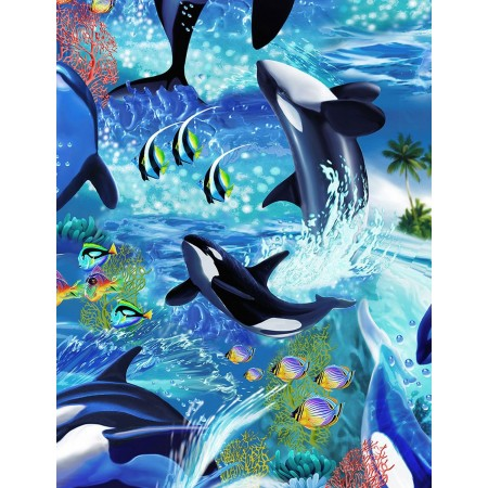 Killerwhales Bunkbed Hugger Comforter by California Kids