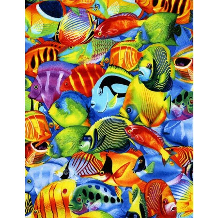 Tropical Fish Hugger Comforter by California Kids