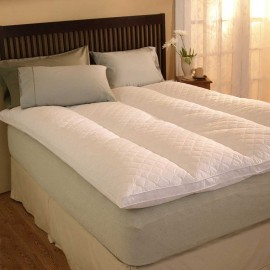 Pacific Coast Euro Rest Feather Bed - 39 X 75 Twin Size